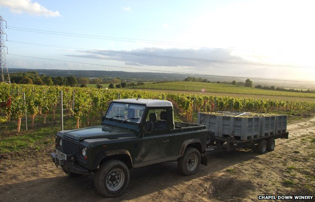 A truck hauls grapes at Chapel Down Winery in Kent