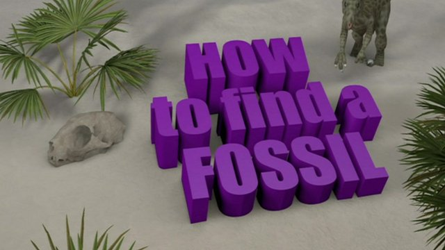 How to find a fossil graphic.