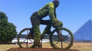 Topiary on stage 13