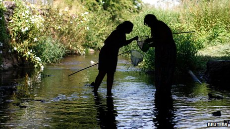Fishing with nets in Anstey, England