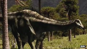 Diplodocus' jaw was narrow and light