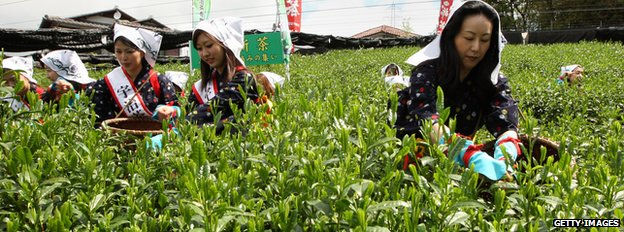Women working on a farm in Japan