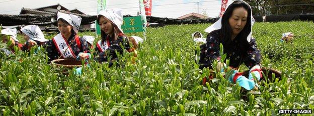 Women working on a farm in Japan