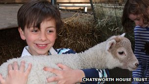 A boy carries a lamb
