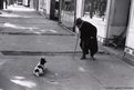 Man meets dog, Neuilly, 1952