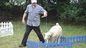Rolo being put through her paces over small fences in 2006