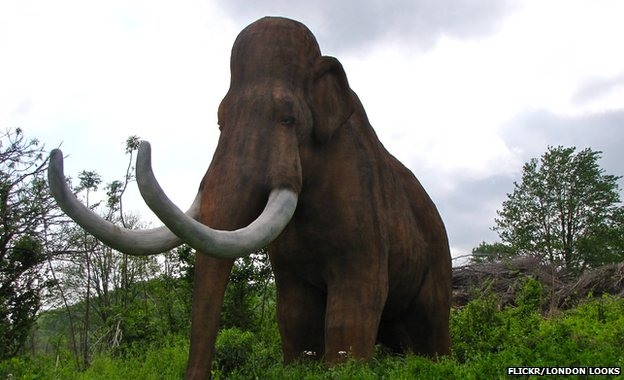 Image of a mammoth