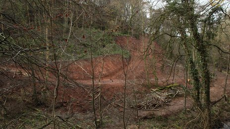 Damaged woodland at Gelt Woods, Brampton, Cumbria
