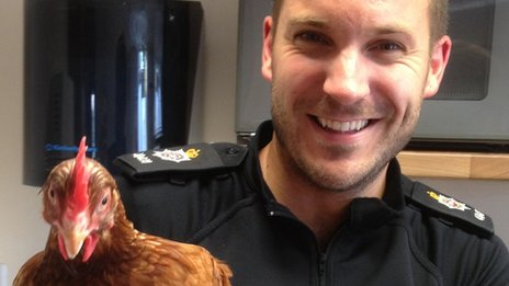 PC Tony Kerby and one of the rescued chickens