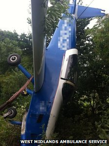 A blue plane facing down in a hedgerow