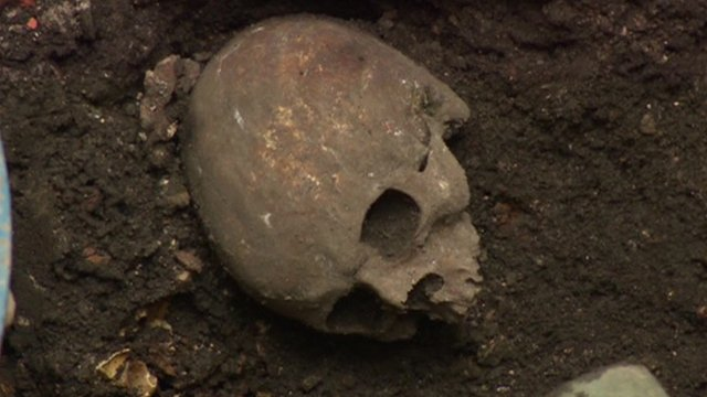 A skull found in London