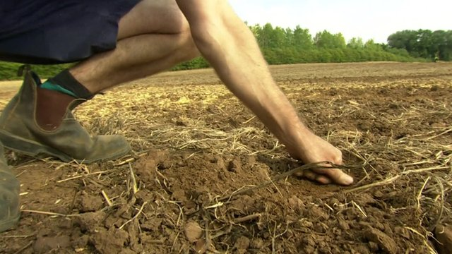 A dry field