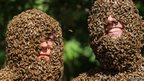 Two competitors cover their faces with bees in a bid to be named Bee Beard Champion in Ontario, Canada on 10 August, 2013.