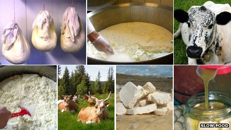 Cheeses (clockwise): Pultost hanging in muslin, pultost in vat, Norwegian cow,  kechek el fouqara, Tuva cheese, cows in Norway, pultost