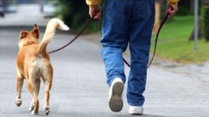 Dog mess to be sprayed orange