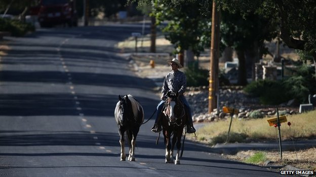 A resident walks a horse down a deserted street after the neighbourhood was evacuated as the Rim Fire closed in in Groveland, California, on 22 August 2013