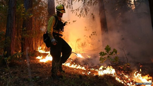A firefighter uses a drip torch to light a back fire while battling the Rim Fire in Groveland, California, on 22 August 2013