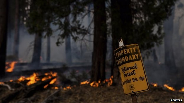 Trees burn behind a sign marking the start of a national forest, near Yosemite National Park in California on 26 August 2013