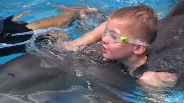 Cieran Kelso swims with Winter the dolphin in Florida