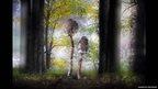 Magic mushrooms: Parasol mushrooms growing in Greece