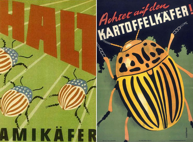 East German government public information leaflets about the problem of potato beetles