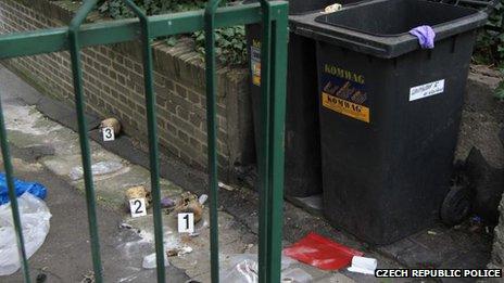 Skulls lying on the ground near a bin in Prague, Czech Republic