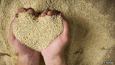 Hands holding quinoa