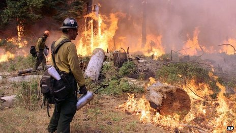 In this photo provided by the US Forest Service, fire crew members stand watch near a controlled burn operation as they fight the Rim Fire near Yosemite National Park in California 1 September 2013