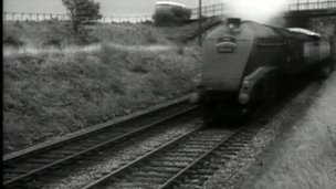 Archive picture of Mallard