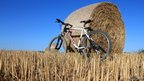 Bicycle and hay