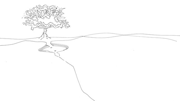 Architect's drawing of a tree