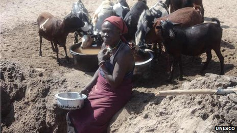 A Turkana Woman scoops water from the sandy bed of River Taraj for her goats in Kenya