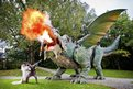 A fire breathing robotic dragon