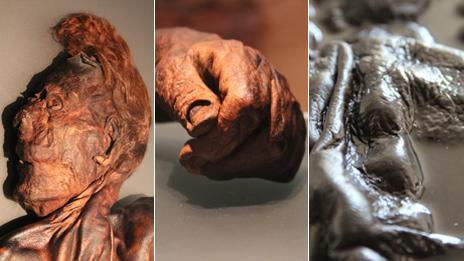 bog bodies comp