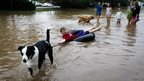 A dog pulls a boy through floods in Colorado