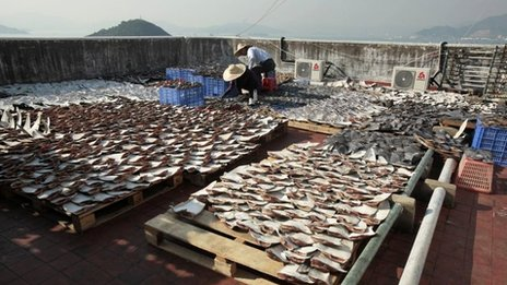 Workers lay out shark fins to dry on a rooftop of a factory building in Hong Kong in an image from January 2013 which caused controversy