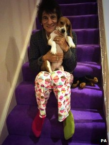 Ronnie Wood joins the campaign