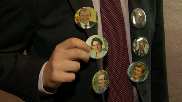 Badges of leading Liberal Democrats