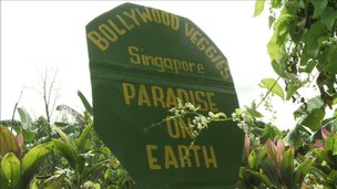 Sign outside Bollywood veggies farm
