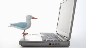 A bird representing 'Twitter' on a keyboard