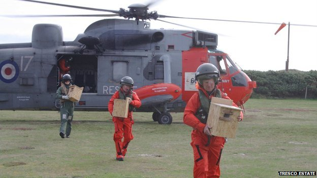 RNAS Culdrose crew unloading the red squirrels