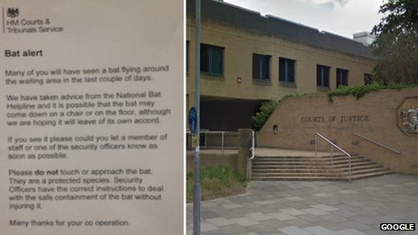 Southampton Crown Court and 'bat alert' notice