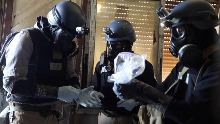 The international chemical weapons watchdog says that it is studying Syria's data on its arsenal of poison gas and nerve agents.