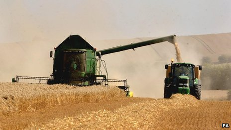Harvesting oats near Cambridge, UK