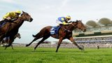 Chriselliam wins at Newmarket