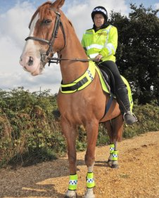 Volunteer Tracy Watts on horseback