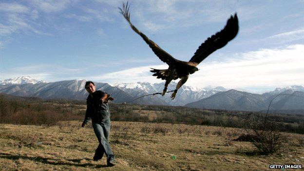 Trainer with eagle near Vladikavkaz