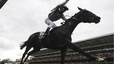 Treve, ridden by Thierry Jarnet, winning the Prix de l'Arc de Triomphe at Longchamp