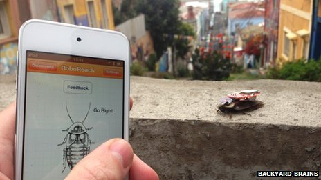 The mobile phone app that controls the cockroach