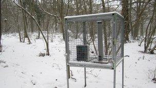 Data logging station in snow